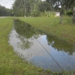 Ditches-in-Micanopy-area-filled-with-water-1024x768