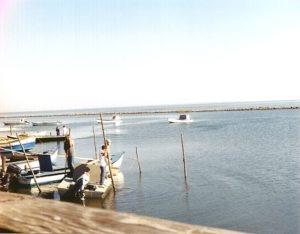 Apalachicola Doin' Time documentary full script with photos